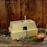 Инкубатор бытовой «Золушка», на 28 яиц, автоматический переворот, 220 В/12 В