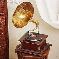 """Граммофон """"Жёлтая ромашка"""" (пластинка в комплекте)"""