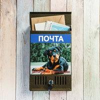 Ящик почтовый с замком, вертикальный, 'Фото', МИКС, бронза