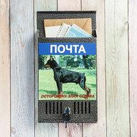 Ящик почтовый с замком, вертикальный, 'Фото', МИКС, серебристый