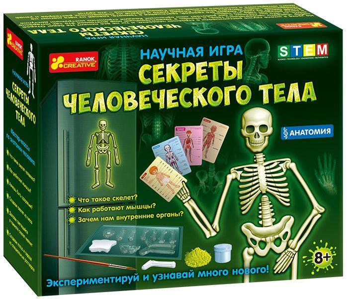 """Ranok 12115017Р Научная игра """"Секреты человеческого тела"""""""