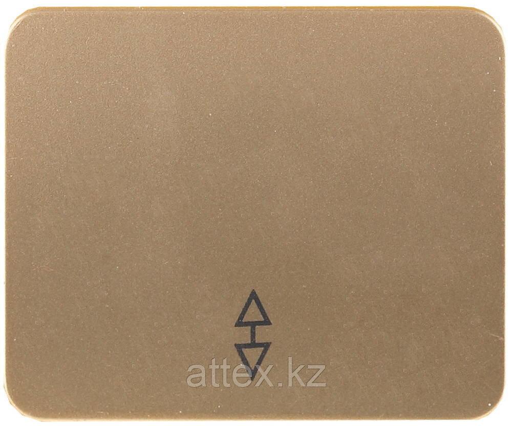 Одноклавишный, без вставки без рамки, 10А,250В, СВЕТОЗАР, ГАММА, SV-54137-GM