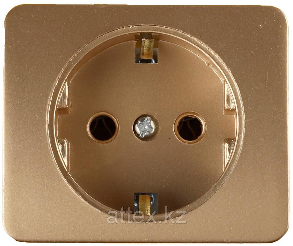 Цвет золотой, макс. Ток 16А, макс. Напряжение 250В, с заземлением, СВЕТОЗАР, ГАММА, SV-54105-GM
