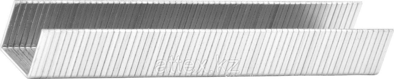 Скобы тип 140, 8 мм, супертвердые, KRAFTOOL 31680-08, 1000 шт