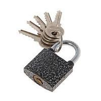 Замок навесной 'АЛЛЮР' ВС1Ч-330, дужка d5 мм, полимер, 5 ключей