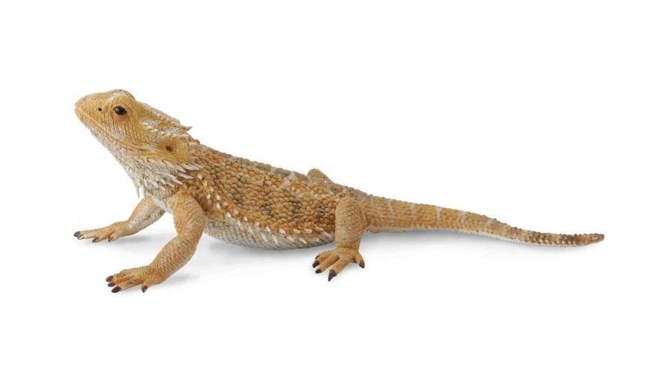 Collecta Фигурка Бородатая ящерица, 12 см