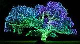"""Cветодиодное светодиодный """"Цветущий кустик"""" для оформления офиса, магазина, дворика, фото 5"""