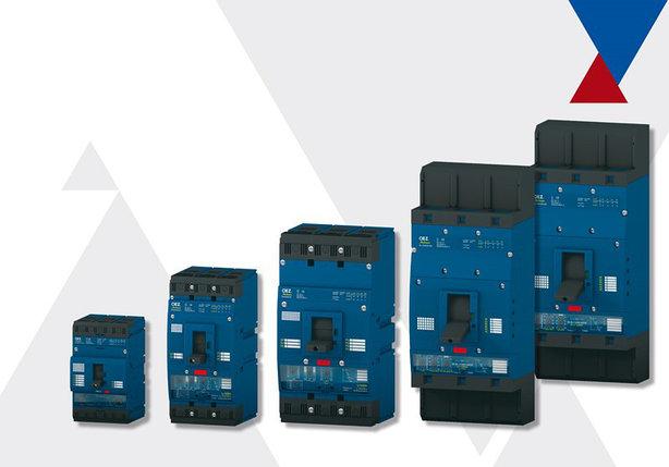 BL1600S Компактные автоматические выключатели до 1600 A OEZ, фото 2