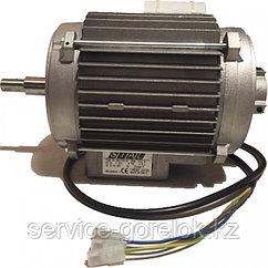 Электродвигатель (Артикул 20400052/1040012133)