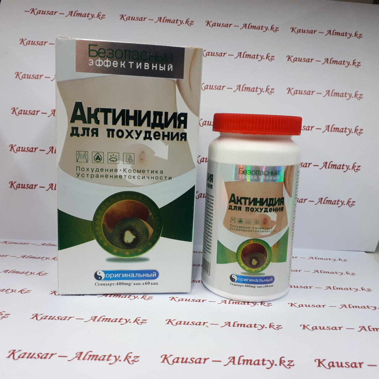 Актинидия - капсулы для похудения