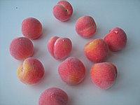 Декор фрукты. Персики. 35 мм. Creativ 427