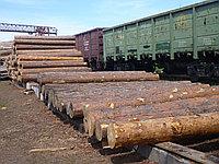 Услуги железнодорожного (жд) тупика