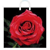 Пакет 'Красная роза', полиэтиленовый с пластиковой ручкой, 38 х 35 см, 100 мкм (комплект из 10 шт.)