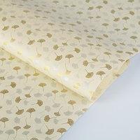 Бумага тутовая, HANJI, 'Гинкго', золотые и серебряные листья, 0,64 х 0,94 м, 30 г/м2