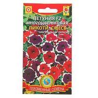 Семена цветов Петуния F2 многоцветковая 'Пикоти', смесь, О, 0,03 г (комплект из 10 шт.)