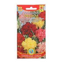 Семена цветов Гвоздика 'Гренадин', Дв, 0,1 г (комплект из 10 шт.)