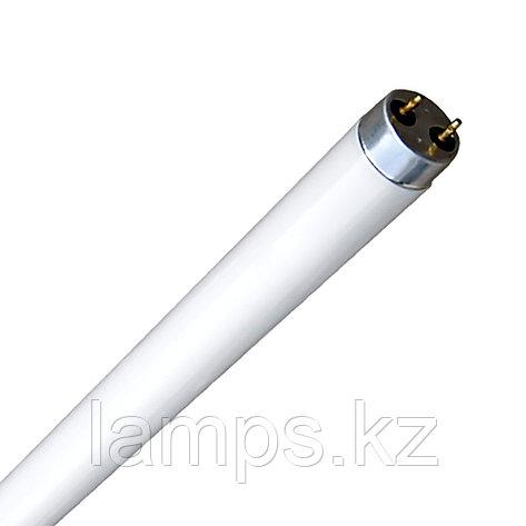 Линейная лампа Т8/F58W/DL 6400K, фото 2