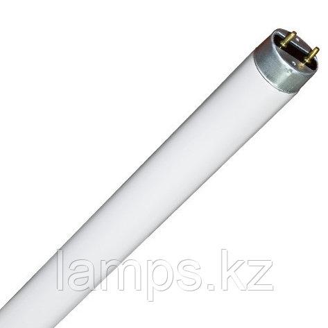 Линейная лампа T8 / F18W / 33 Warm WH, фото 2
