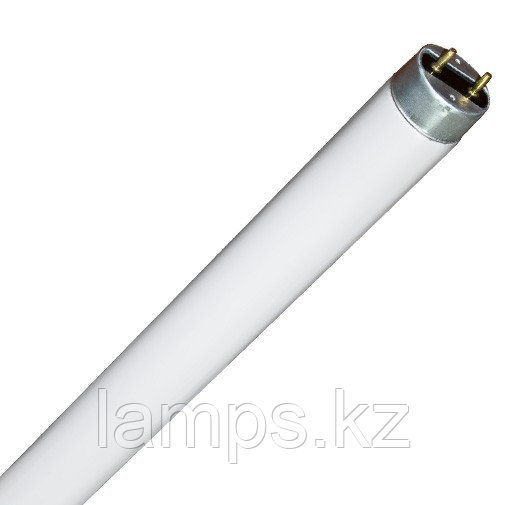Линейная лампа T8 / F36W / 33 Warm WH