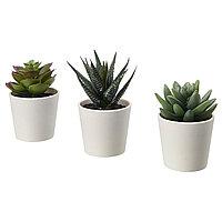 Растение искусственное и кашпо ФЕЙКА 3 шт. ИКЕА, IKEA