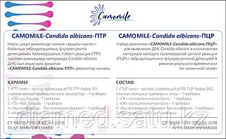 Набор реагентов CAMOMILE-Candida albicans-ПЦР