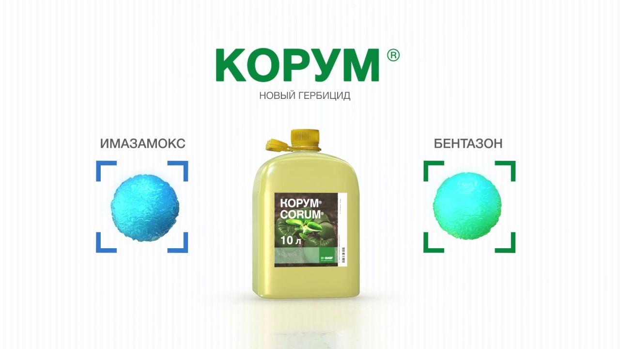 Гербицид Корум. Новый гербицид BASF для защиты сои от сорняков