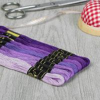 Набор ниток мулине 'Цветик-Семицветик', 10 ± 1 м, 7 шт, цвет фиолетовый спектр