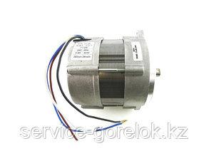 Электродвигатель RHE 150 Вт (172T) 3008972-RL