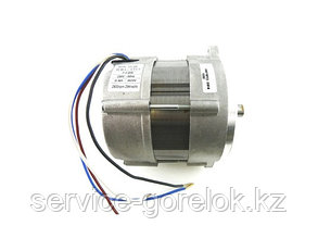 Электродвигатель RHE 450 Вт (RH S 110) 3003772-RL