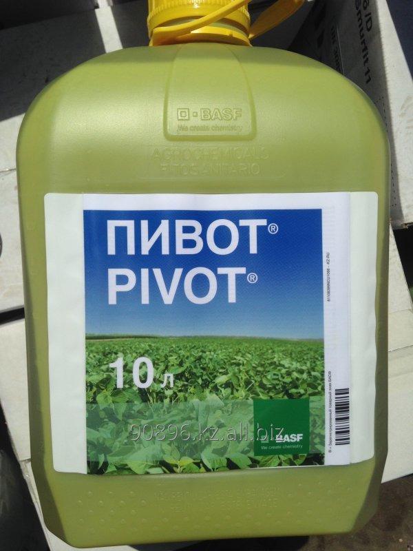 Гербицид Пивот. Универсальный гербицид для уничтожения широкого спектра однолетних и многолетних злаковых.