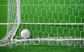 Сетка шестигранная для футбольных ворот нить D=5 мм (7,32х2,44 м)
