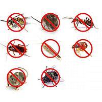 Защита от насекомых, грызунов