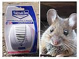 Ультразвуковой отпугиватель крыс и мышей.Чистый дом, фото 3