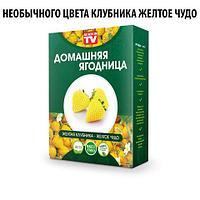 Чудо-набор для выращивания клубники дома «Сказочный огород круглый год» без ГМО (Желтая клубника