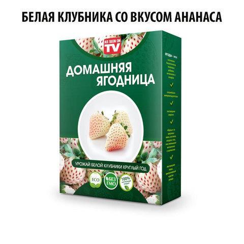 Чудо-набор для выращивания клубники дома «Сказочный огород круглый год» без ГМО (Белая клубника со вкусом
