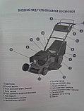 Газонокосилка  бензиновая с металлическим корпусом. самоходная -  plm 51 C, фото 4