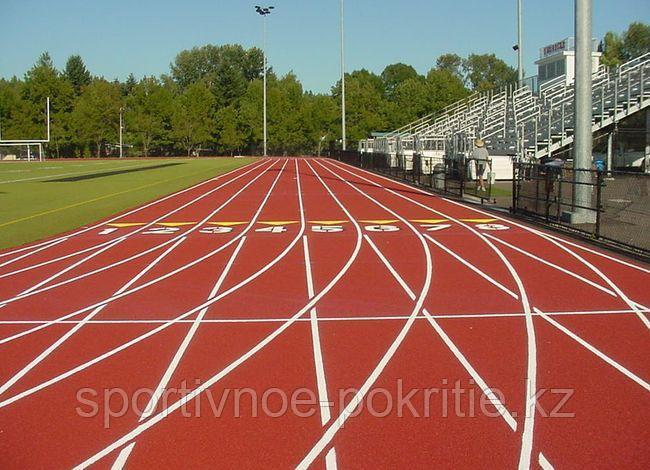 Нанесение спортивной разметки для любых спортивных площадок, фото 2