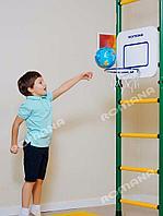 Баскетбольный щит
