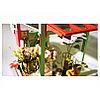 Румбокс Кондитерская со светодиодной подсветкой DIY House Ice Cream Station, фото 6