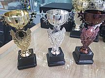 Кубки Чаши для награждения на заказ