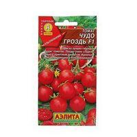 Семена Томат 'Чудо гроздь' F1, ультраранний, 0,05 г (комплект из 10 шт.)