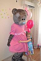 Мишка девочка на день рождения в Павлодаре, фото 1