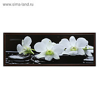 """Картина """"Орхидеи на чёрных камнях"""" 57*157 см рамка МИКС"""