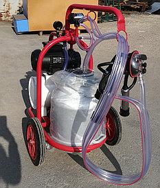 Доильный аппарат Arden ARD-1100 сухого типа 30 лит
