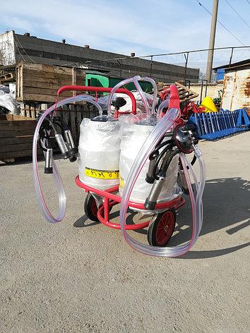 Доильный аппарат Arden ARD-2200 сухого типа 30 лит, фото 2