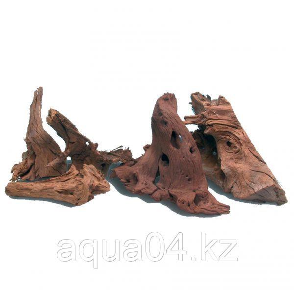 Коряга мангровая, размер M (28-35см)