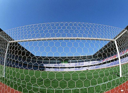 Сетка шестигранная для футбольных ворот нить D=5 мм (7,32х2,44 м) пара