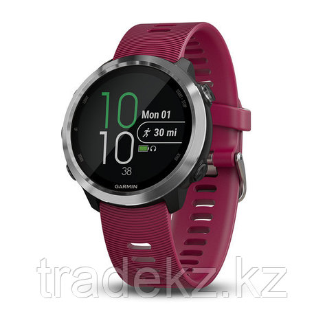 Спортивные часы Garmin Forerunner 645 Music Cerise (010-01863-31), фото 2