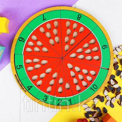 Развивающая игра - Арбуз, фото 2