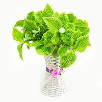 Искусственная зелень, фото 1